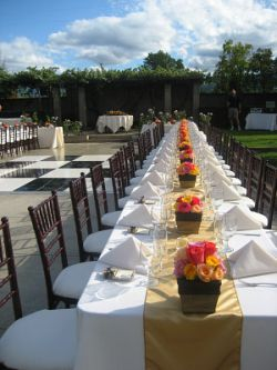 Ceremony in Vineyard Facing Pavilion